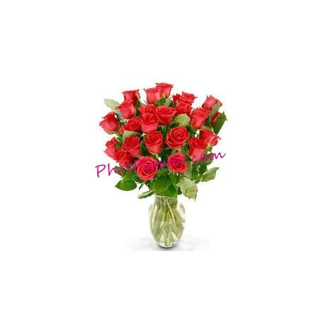 delivery 24 Red roses to Philippines,24 Red roses send to