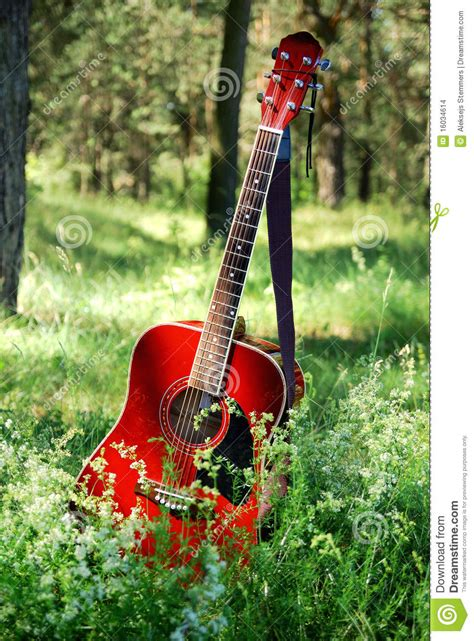 Acoustic Guitar In The Grass Stock Photo - Image: 16034614