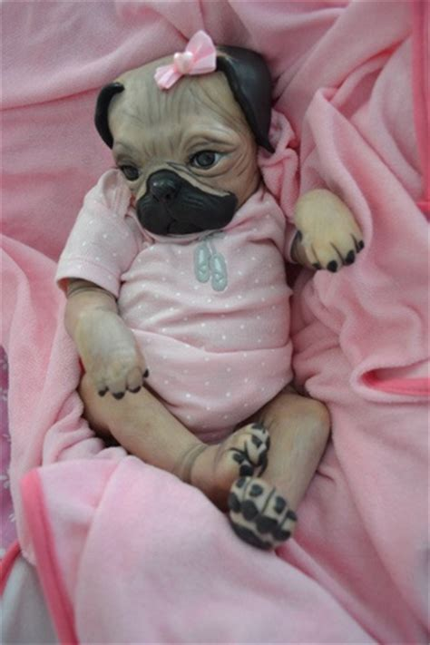 Baby pugs, Pug puppies and Reborn babies on Pinterest